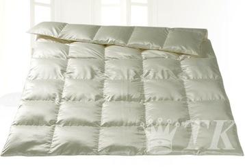 пуховое одеяло фишбахер